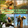 Благоустройство участка Воронеж