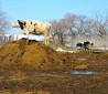 Навоз с доставкой по воронежу и в Воронежской области