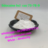 Top lidocaine hcl powder supplier 73-78-9 with lower price 73 78 9