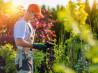 Нововоронеж садовник услуги садовников в Нововоронеже в Воронежской области