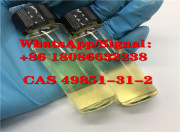 2-Bromovalerophenone CAS49851-31-2 / factory 49851-31-2 China supplier