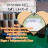 CAS 51-05-8 supplier/ Hot sale procaine hcl / buyer procaine hcl China
